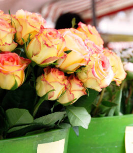 Pick the best Valentine's Day Flowers Ever!