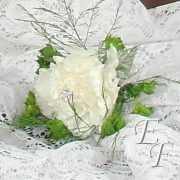 700-White Carnation Bout 1