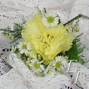 703-Spring Daisy Boutonieere