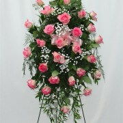 24 Pink Roses Standing Spray