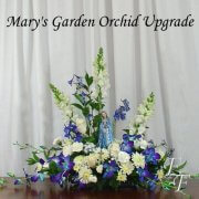SYM 207-3 Orchid Upgrade 500