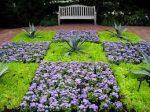 Ble Hawaii Garden