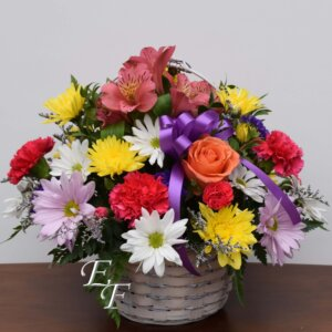 310 Colorful Basket