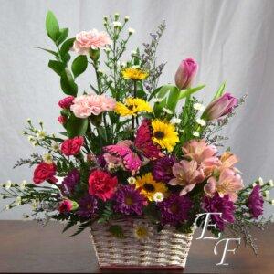 Springtime Shades - Pinkb