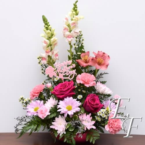 EF 184 Mother's Day Special
