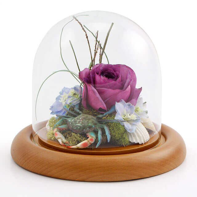 small-themed-keepsake-dome-with-crab-rose-flowers