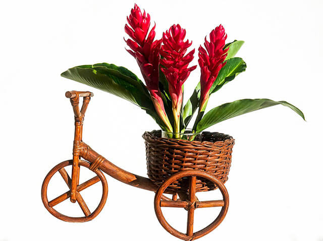 Small handcrafted bicycle with a flower in its basket.