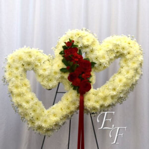 Double Heart Tribute 218-T5 500