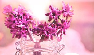 hyacinth-easter-flower-in-mason-jat