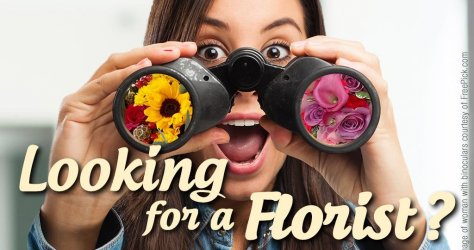 looking-for-a-florist