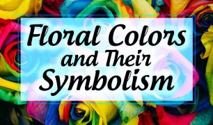 Flower color symbolism