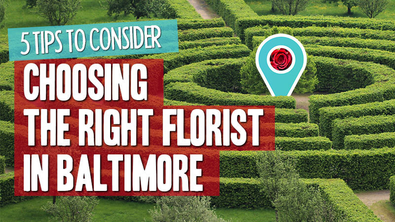 5 tips to consider when choosing a florist in Baltimore