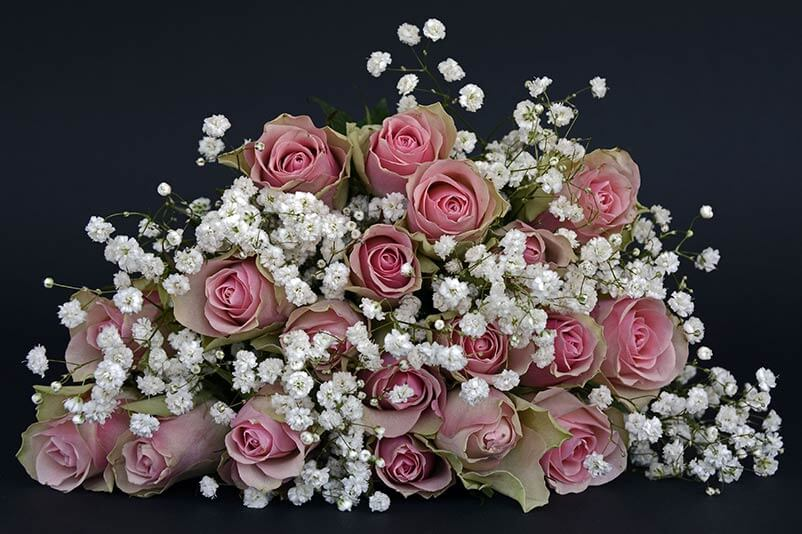 Centerpiece with pink roses and baby's breath